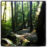 portland trail running, moms running, healthy family, kids running