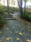 portland trail running, moms running, healthy family, run